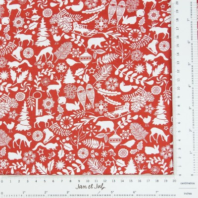 Red Winter Motifs