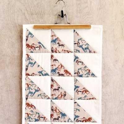 Proyecto de AGF con tela de caballos